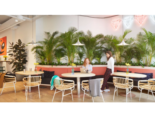 WeWork Breakout Space Example